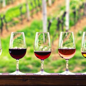 CLS corso degustazione vino