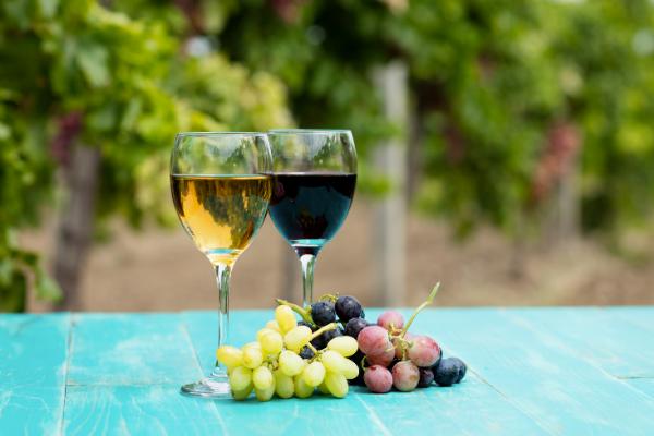 CLS - ciclo conferenze alimentazione e sostenibilità - Vino al Vino - 3 appuntamento