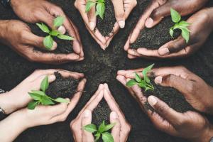 cls_green_sostenibilità